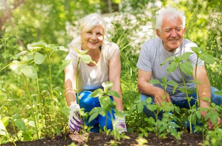 Los beneficios de la jardinería