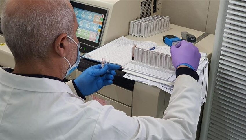 Coronavirus: Vacuna china arroja resultados prometedores