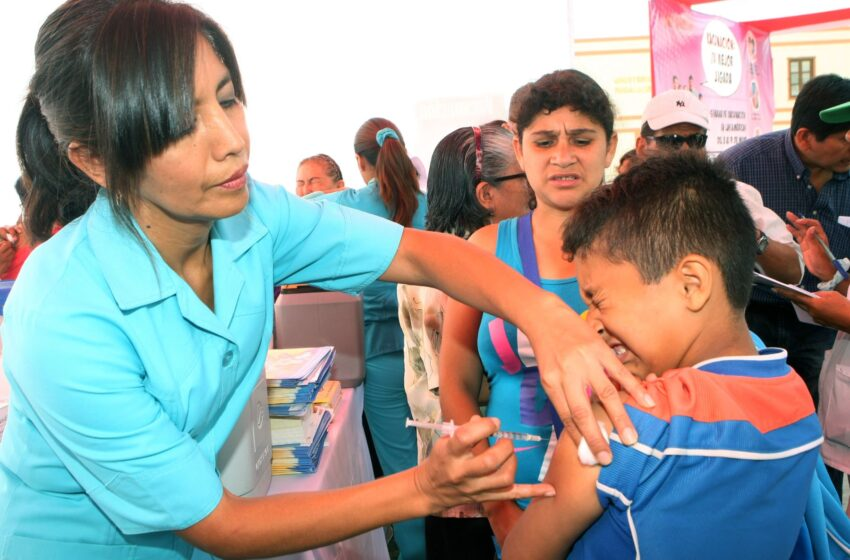 ESTRATEGIA SANITARIA NACIONAL de Inmunizaciones