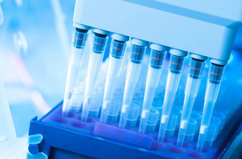 MINSA: pruebas rápidas complementan a las moleculares